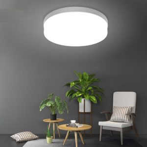 Modern Plastic LED Ceiling Lamp